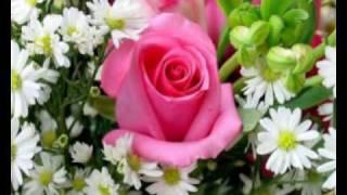 Gianni Morandi-Un Mondo D'Amore.wmv