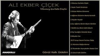Ali Ekber Çiçek - Gönül Kalk Gidelim (Official Lyric Video)