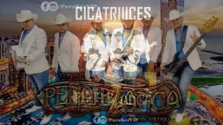 Conjunto Peña Blanca - Cicatrices ♪ 2016 COMPLETA