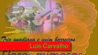 Trio Guadiana e Quim Barreiros - Flores mimosas