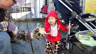 10个月14天 钓螃蟹2