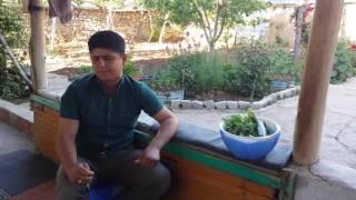 Ölüm İlahisi - Ali Kırış ( Ağlatan ilahi )
