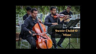 Sweer Child O´Mine - Cover - Cantaarte - Banda de casamentos Brasília