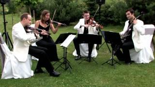 Oasis 'Whatever' - Strelitzia String Quartet
