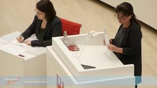 Christina Schade (#AfD): In Brandenburgs Kassen fehlt trotz guter Steuereinnahmen viel Geld