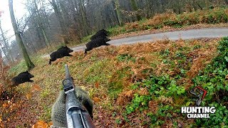 LOV NA DIVLJE SVINJE POGONOM 2019!Driven wild boar hunting Giant pigs rolling dead down the hills