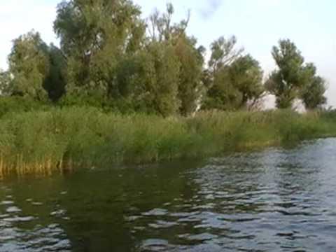 Kherson, Dnepr River Delta (15)