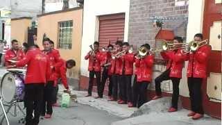 BANDA PEQUEÑOS TIERRA BLANCA PEQUEÑA DE OJOS BRUJOS (LOS REDONDOS) 2012