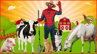 Old MacDonald Had a Farm Song for Kids Sing Along Nursery Rhyme with Spiderman and Animals
