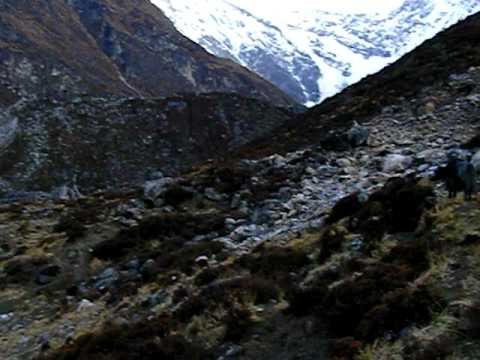 Kyanjin valley early in the morning, Langtang trek, Nepal