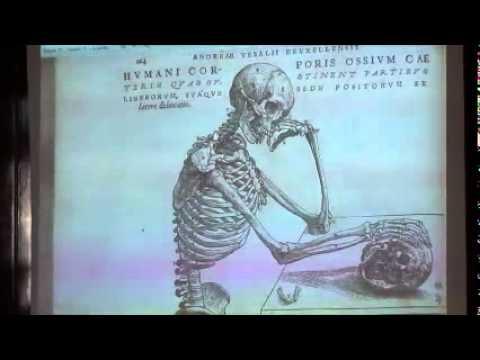 Sanatsal Anatomi Dersi: Anatomiye Giriş (1. Bölüm)