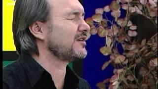 DE TUDO UM POUCO - David Quinlan - Rei do universo
