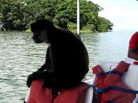 Monkey Island Lake Nicaragua