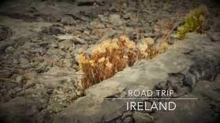 Nestor // Roadtrip en Irlande