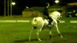 * Cavalo Ruço * [ Updated ]