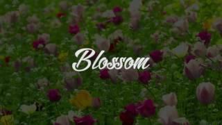 The Deli - Flowers