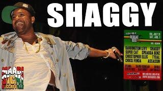 Shaggy - Church Heathen @Reggae Geel 2015