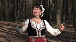 Dorina Matără Târnoveanu – Zboară, cucule, departe !