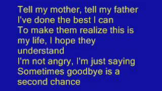 Shinedown - Second Chance With Lyrics