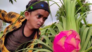 छोटू बंगाली का जादू   CHOTU BANGALI KA JAADU   Khandesh Hindi Comedy   Chotu comedy Video