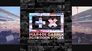 Martin Garrix-Forbidden Voices