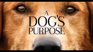 Rachel Portman - A Dog's Purpose