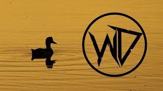 Ringtail - Waking Up (Wubbaduck Remix)