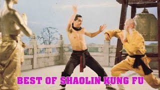 Wu Tang Collection - Best of Shaolin Kung Fu