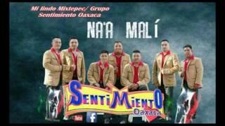 Grupo sentimiento oaxaca 2016 - Mi lindo Mixtepec