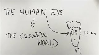 The Human Eye and The Colourful World - ep01 - BKP | Class 10 boards science physics in hindi tips width=