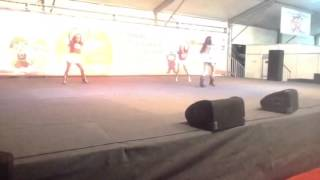 Anita Cover do grupo de dança da Maria José Tedesco - MJ Pr
