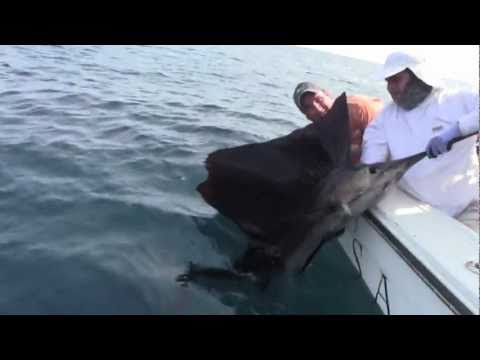 Nicaragua – Dorado & Sailfish