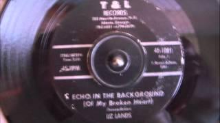LIZ LANDS - ECHO IN THE BACKGROUND