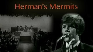 Herman's Hermits - What a Wonderful World