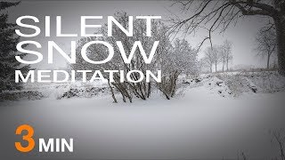Spring Snow Storm Wind Sound [ASMR] - 3 Minute Meditation at Ravencroft No.1