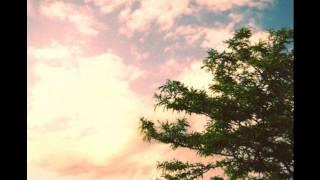 Earthtones - Distance