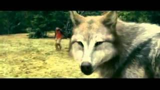 batalla   hombres lobos vs vampiros CLAN INFERNAL WOLFS 11CONDADO 4 mex