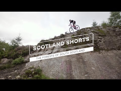 Scotland Shorts - The Forests of South Scotland