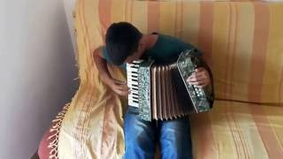 Iron Maiden - Dance Of Death - solo on accordion