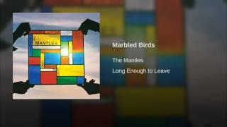 Marbled Birds