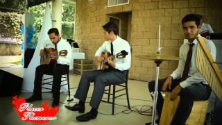 El toro y la luna guitarra - Placer Flamenco