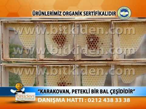 BITKIDEN ORGANIK BAL POLEN PROPOLIS ARI SUTU - http://www.bitkiden.com