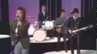 The Rolling Stones — Paint it black live 1966