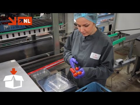 Lucreaza in Olanda cu NL Jobs! photo