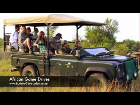 Bushwa Private Game Lodge – South Africa