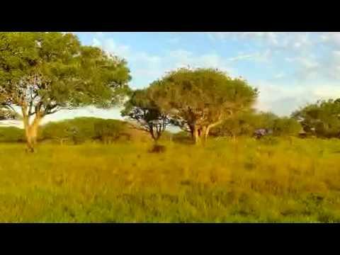 South Africa 2010 – Bhangazi Horse Safari