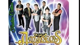 Los Amadeos-Abre Tu Corazon