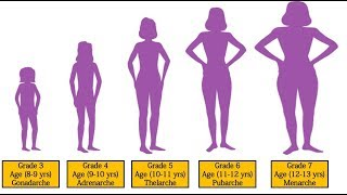 Puberty for Girls Stages 3rd Grade | 4th Grade | 5th Grade | 6th Grade | 7th Grade