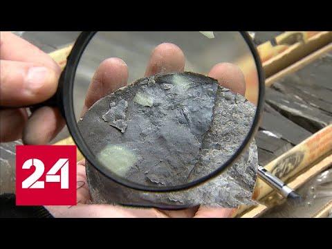 Впервые в истории: российские геологи выполнили бурение в Северной Арктике - Россия 24