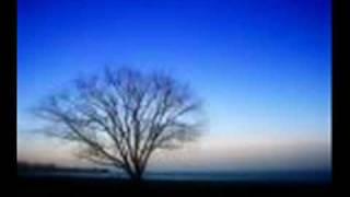 REGGAE LOVE SONG t t ross misty blue